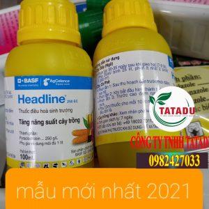 HEADLINE-250EC
